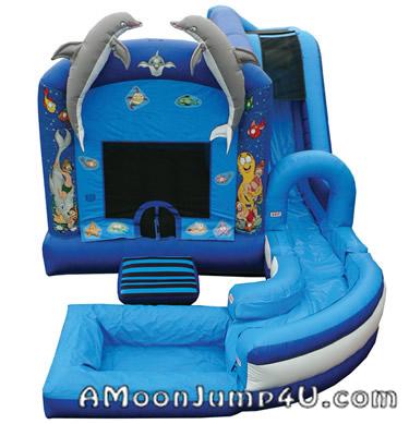 Jump-n-Splash Bounce House + Inflatable Water Rental